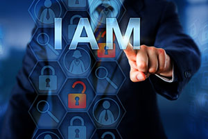 Identity and Access Management in the Era of Digital Transformation